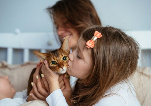 Happy mother and daughter smiling hugs in bed. Happy family at home interior with pet cats